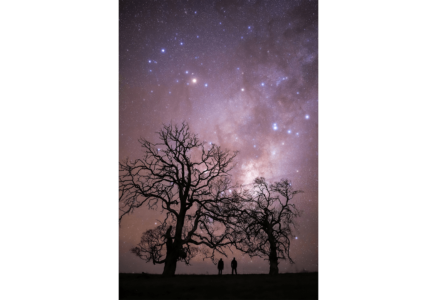 Astrophotography image of stars and sillhouettes of two people between trees - sample photo by Canon EOS 6D Mark II