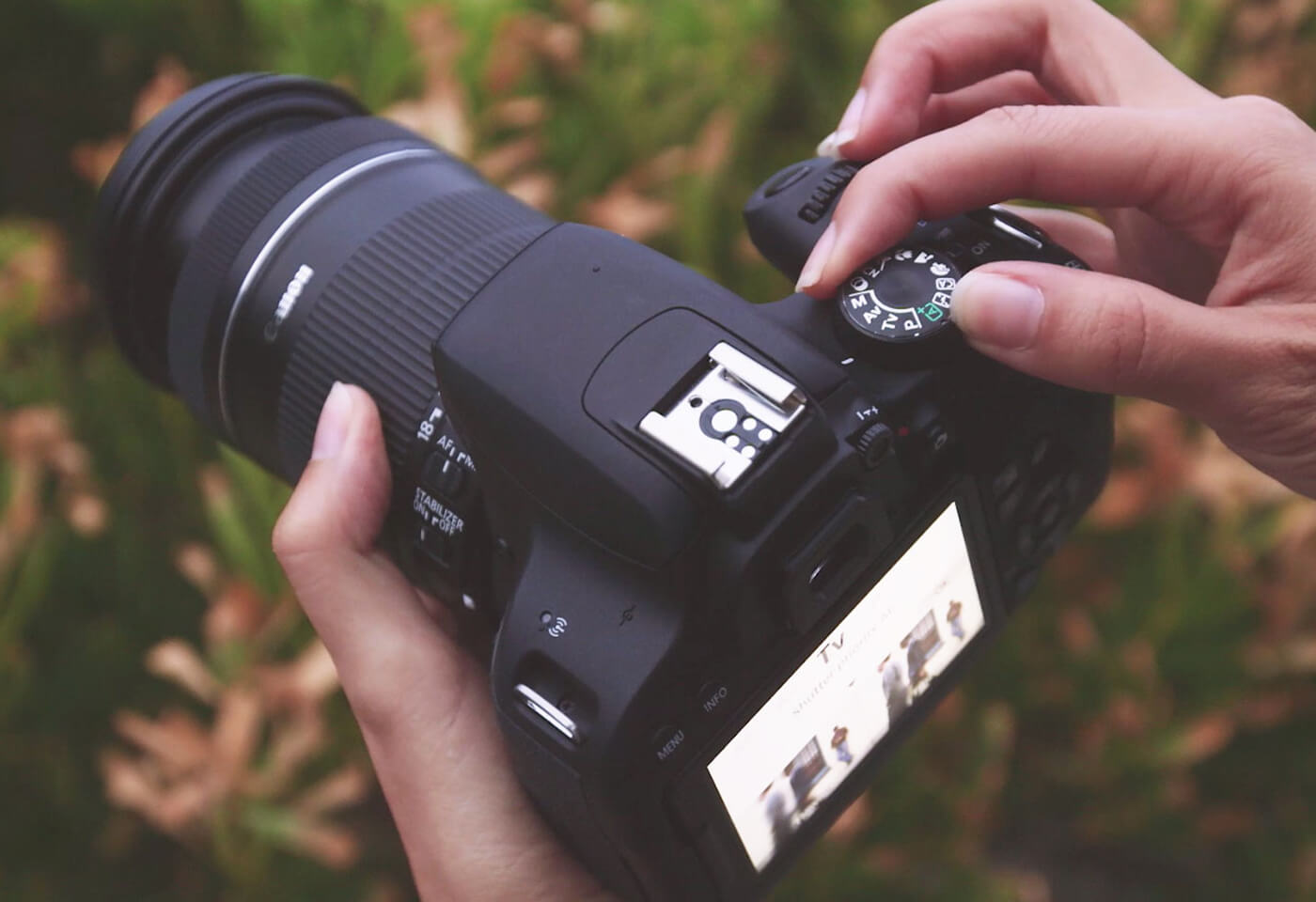 EOS 800D: The Perfect DSLR for beginners   Canon New Zealand