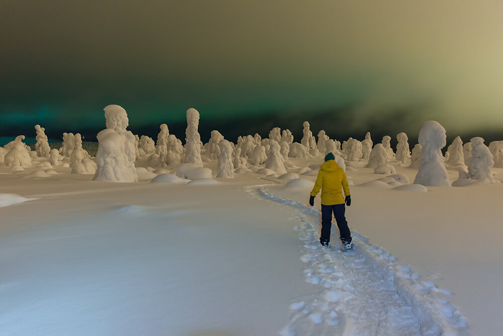 Snowshoeing under the aurora in northern Finland.jpg