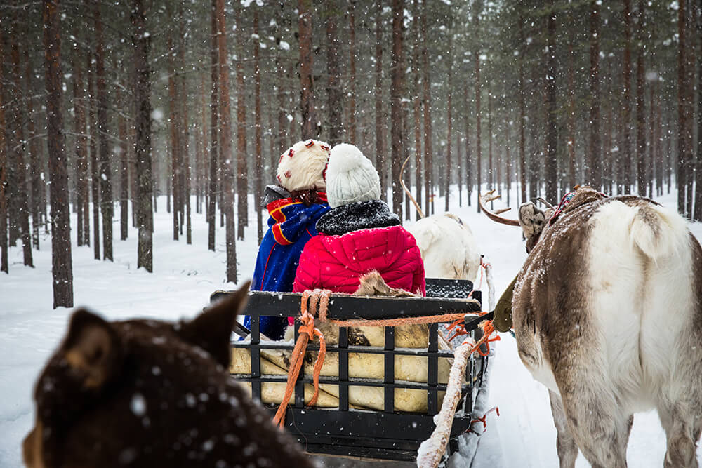 Visiting a reindeer farm in Finnish Lapland.jpg