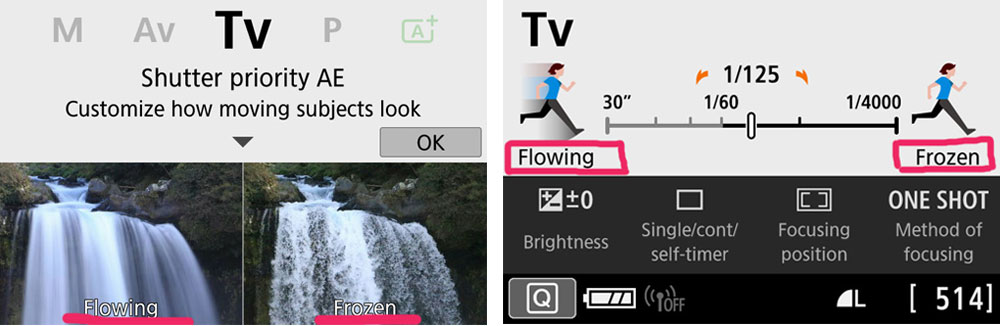 Canon Guided Display TV Mode Example