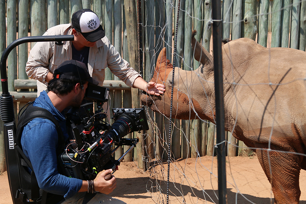 Rhinoceros on the set of Nat Geo's Save This Rhino documentary