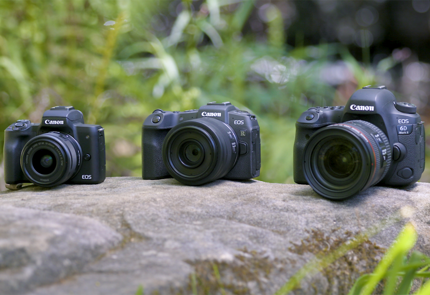 Mirrorless Vs Dslr Cameras Which Is Right For You Canon